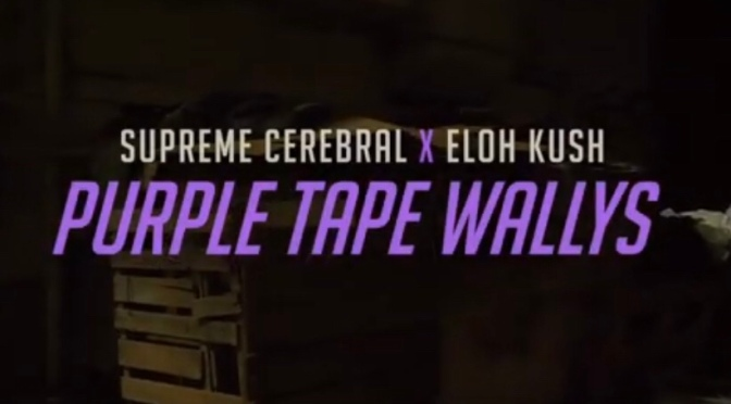 Video   Purple Tape Wally's – Clark Connoisseurs [ @BugzyNino x @ELOHKUSH #W2TM