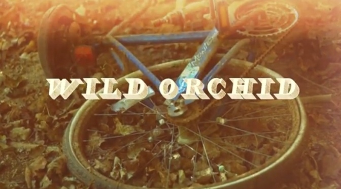 Video | Wild Orchid – ‪@fanranfilms ‬#W2TM