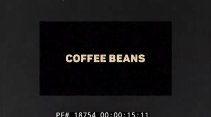 Video | Coffee Beans – @BorvoeMcMidnite x @EddieWordMusic #W2TM