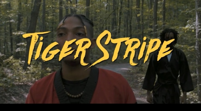 Video | Tiger Stripe – @kingblissent x @MCDJFinn #W2TM