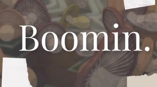 Listen & Purchase | Boomin – @SleepSinatra #W2TM