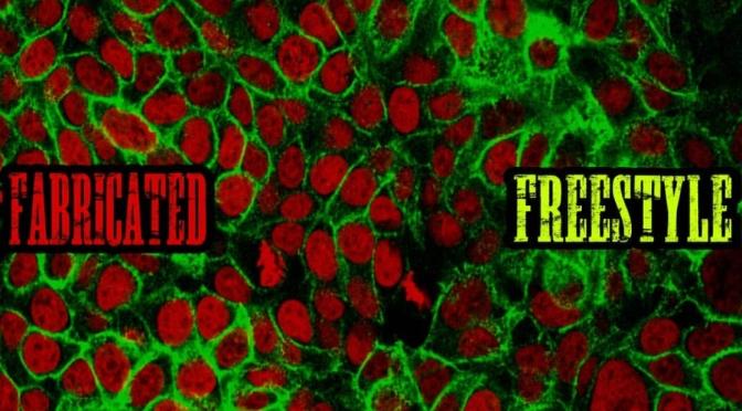 Music | Fabricated Freestyle – @mougadon #W2TM